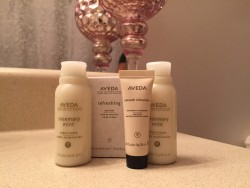 aveda is a great produc, but it is more catering towards the holistic side.