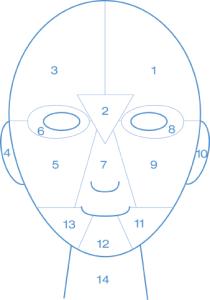 Facemap